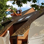 Roof Moss Removal & Cleaning Services In Wendover